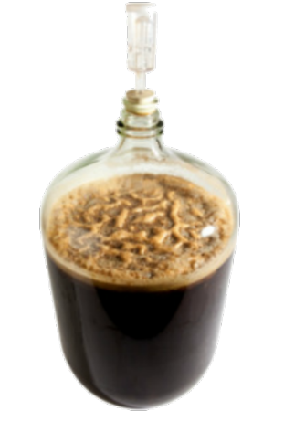 Beer fermentation in a carboy