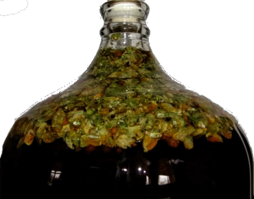 Dry hopping in a carboy