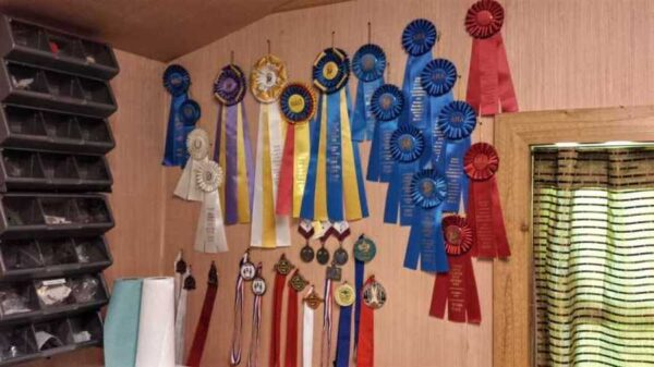 Several ribbons on the wall won from home brew competitions.