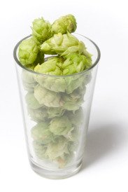 Dry hops in a pint glass