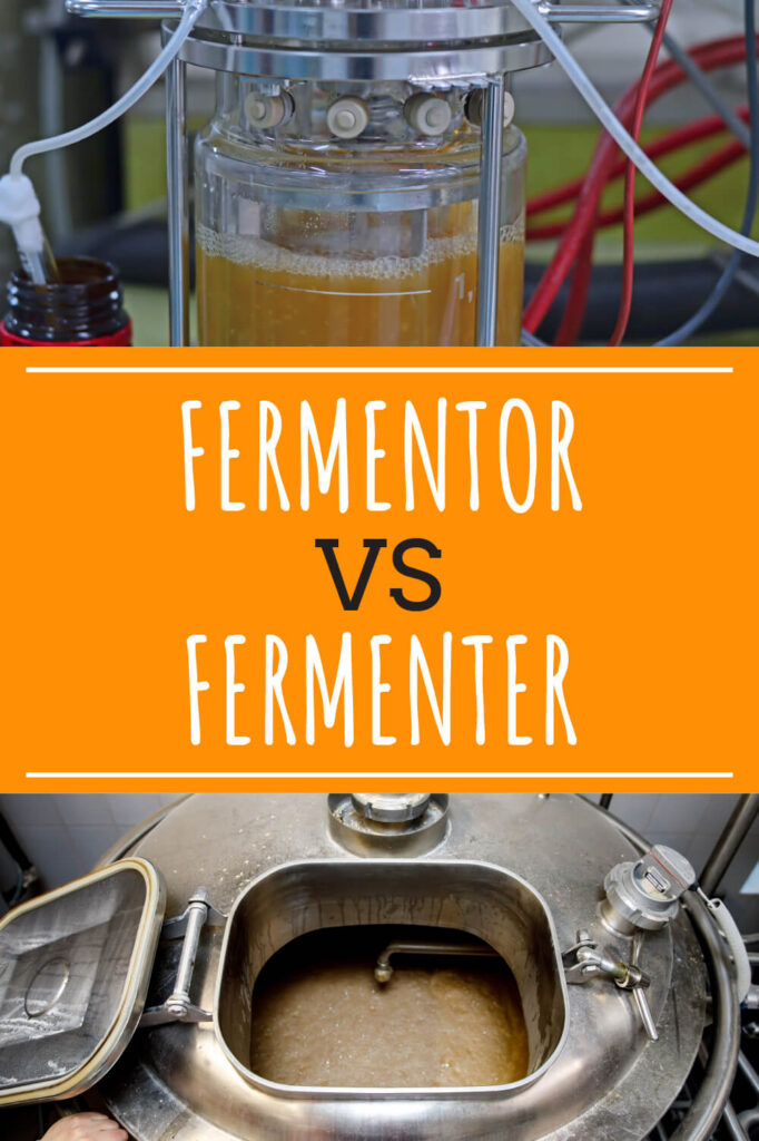 Two different pictures of homebrew fermenting. Text in-between the two pictures reads fermentor vs fermenter.
