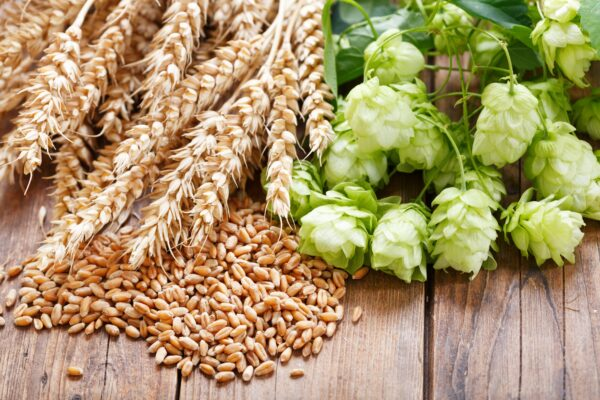 Noble Hops And Wheat