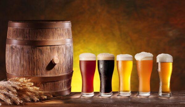 Beer Tasting Glasses