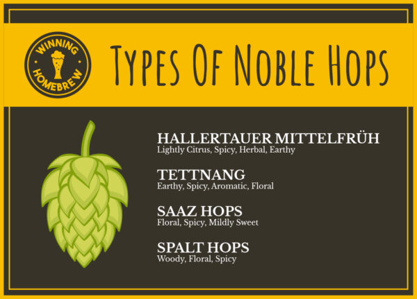 Noble Hops Infographic