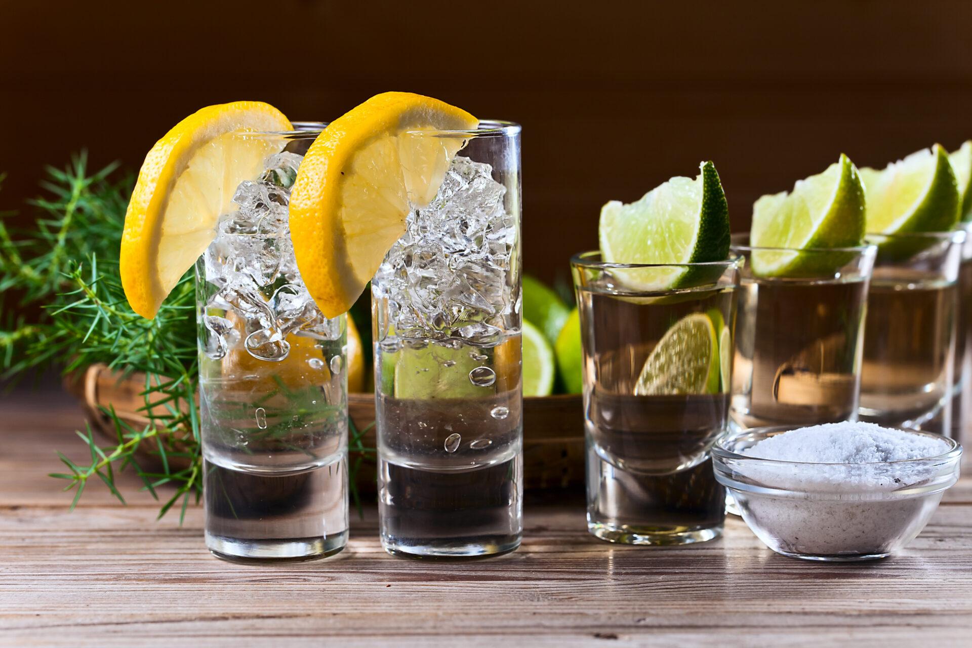 Gin Vs. Vodka